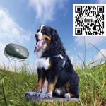 Tracker for din hund
